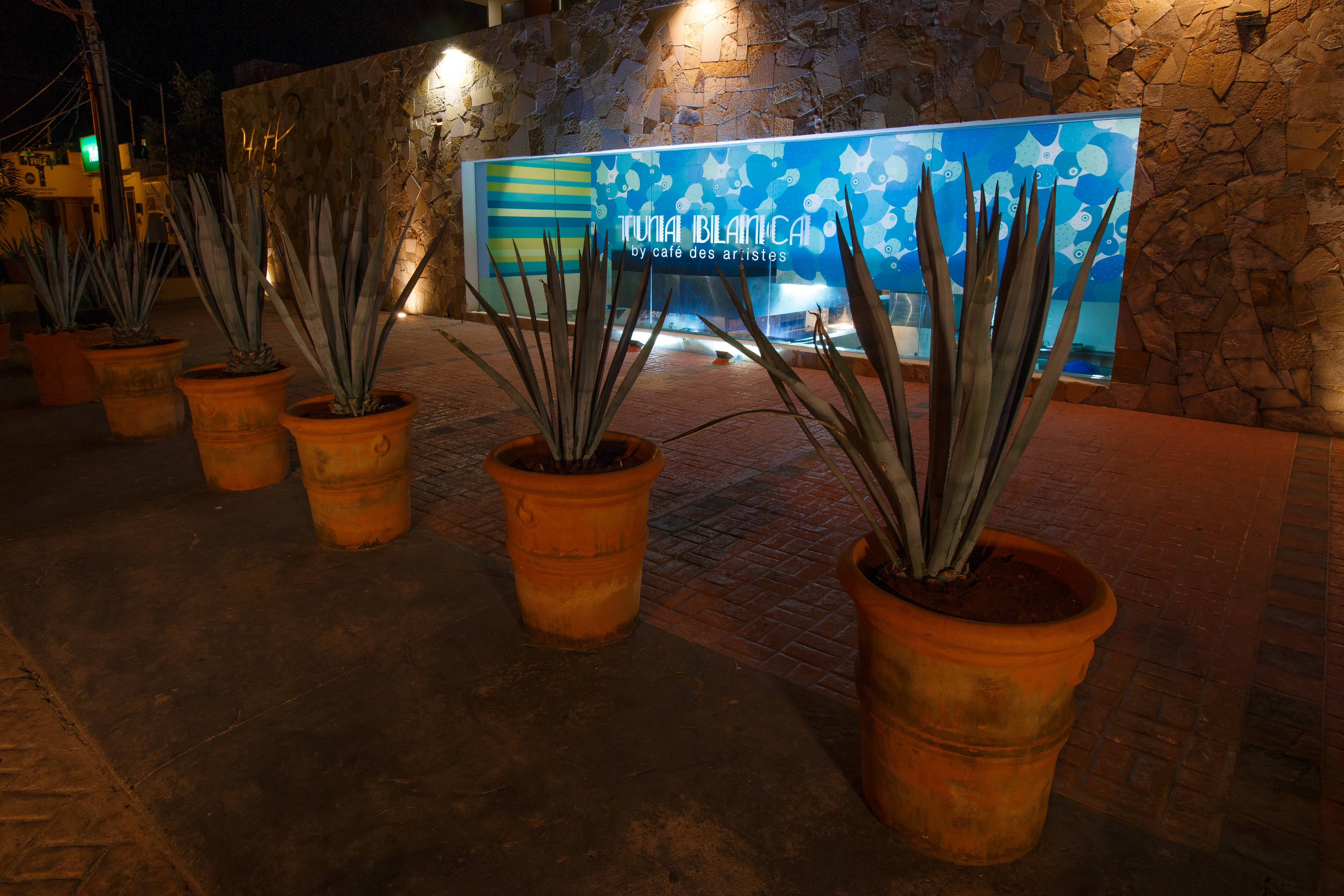 Tuna Blanca, Punta Mita, MX, Restaurant