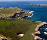 Facts Worth Knowing About Biodiversity in Marieta Islands