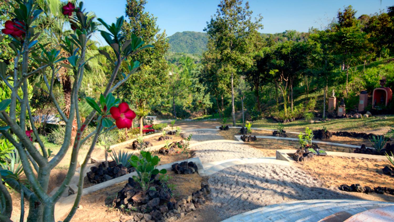 Tu nuevo lugar favorito en el Jardín Botánico de Vallarta ...